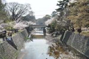 寻找少年村上春树之1--阪神少年