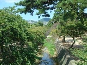 寻找少年村上春树之3–夙川