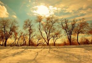冬天,温暖你的十四个断章