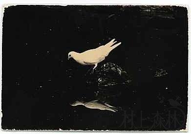 图文馆:人的心灵就是夜间的鸟-2014-01-03