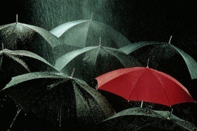 图文馆(25)| 七月之诗