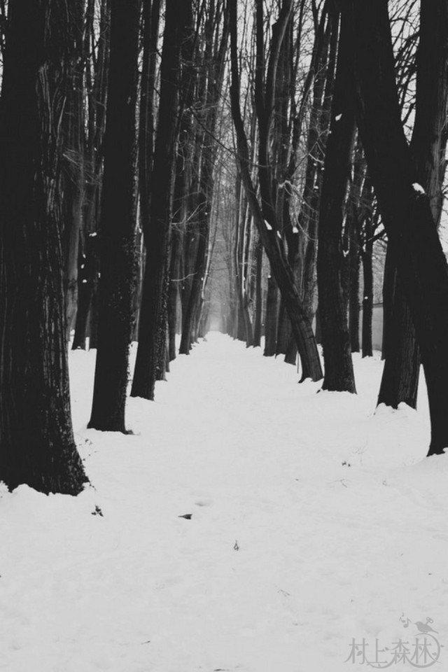 舒伯特《冬之旅》节选| 我第一次发觉,我已多么疲倦